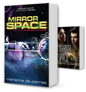 Mirror Space Book Cover
