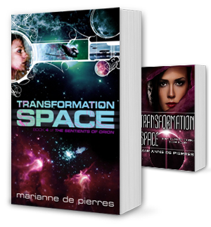 Transformation Space Book Cover