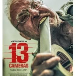 13cameras1